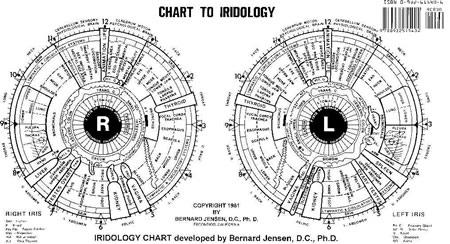 Iridology Detox Net Au
