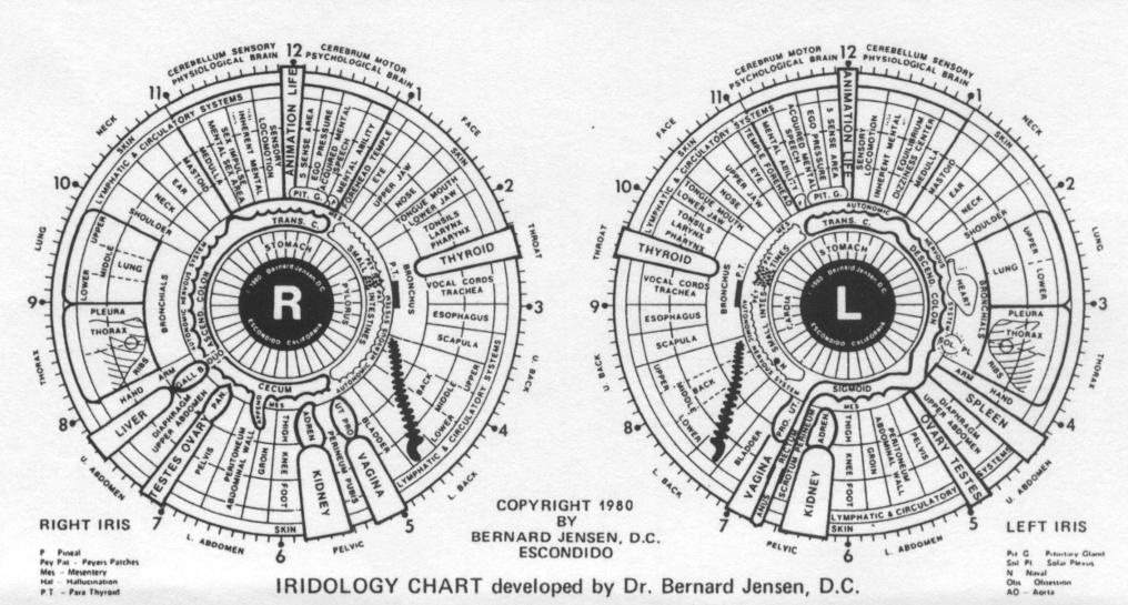 Iridology Chart Detox